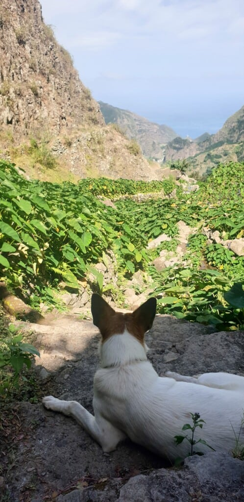 best hiking trail in santo antao paul valley