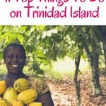 What To Do on Trinidad Island. Discover the best beaches of the Caribbean island, its vibrant steelpan music scene, the best hiking trails and even Hindu temples. Travel To Trinidad & Tobago will leave you amazed #trinidadandtobago #trinidad #tobago #trinidadisland #islandlife #caribbean #music #hiking #nature #cocoa