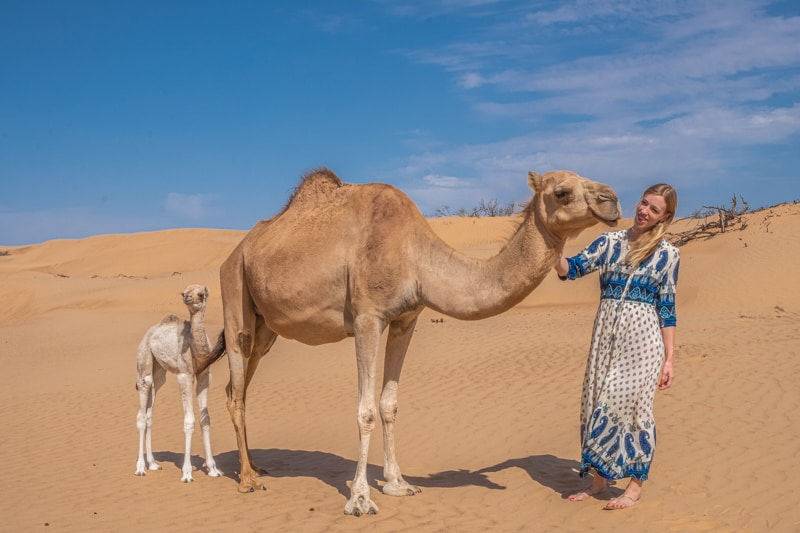 days in oman, what to do in oman, wahiba sands, oman dunes, desert camp