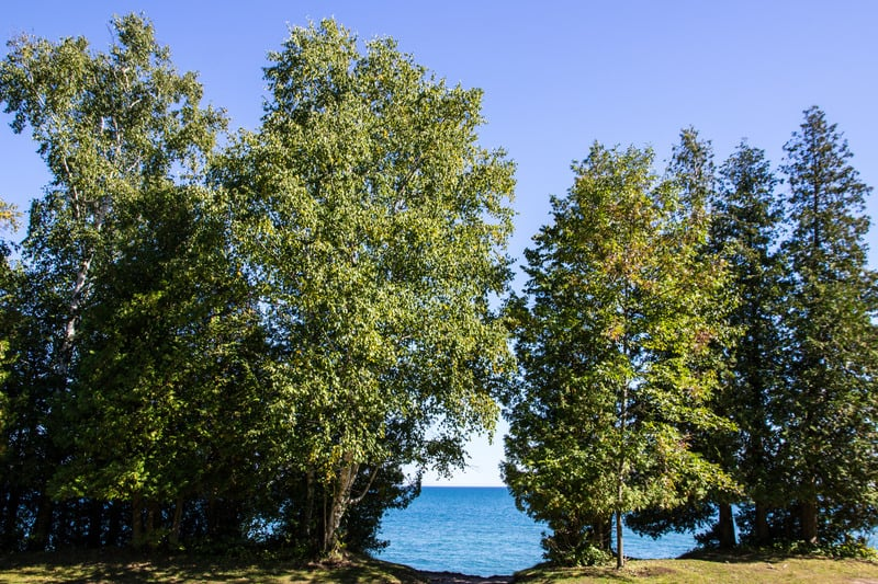 Best Things to do in Door County, WI, Spectacular view of Lake Michigan from Cave Point County Park